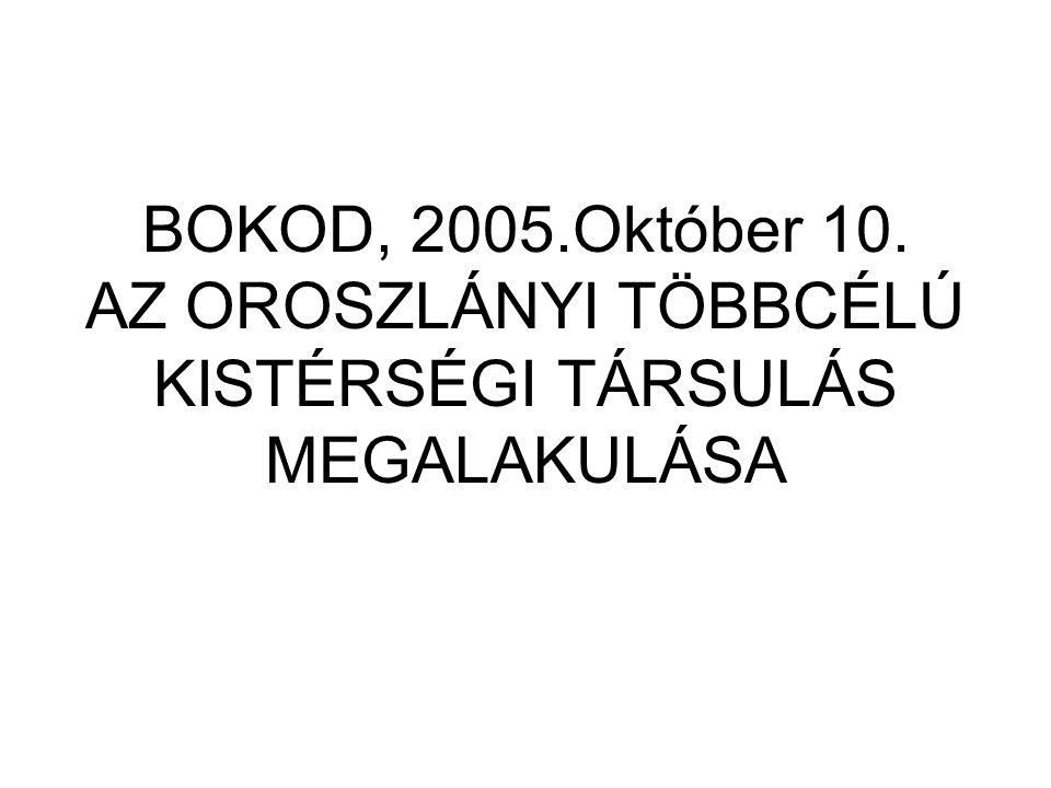 BOKOD, 2005.Október 10. AZ OROSZLÁNYI TÖBBCÉLÚ KISTÉRSÉGI TÁRSULÁS MEGALAKULÁSA