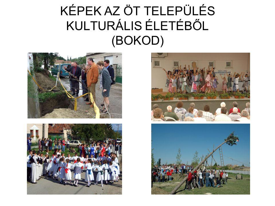 KÉPEK AZ ÖT TELEPÜLÉS KULTURÁLIS ÉLETÉBŐL (BOKOD)