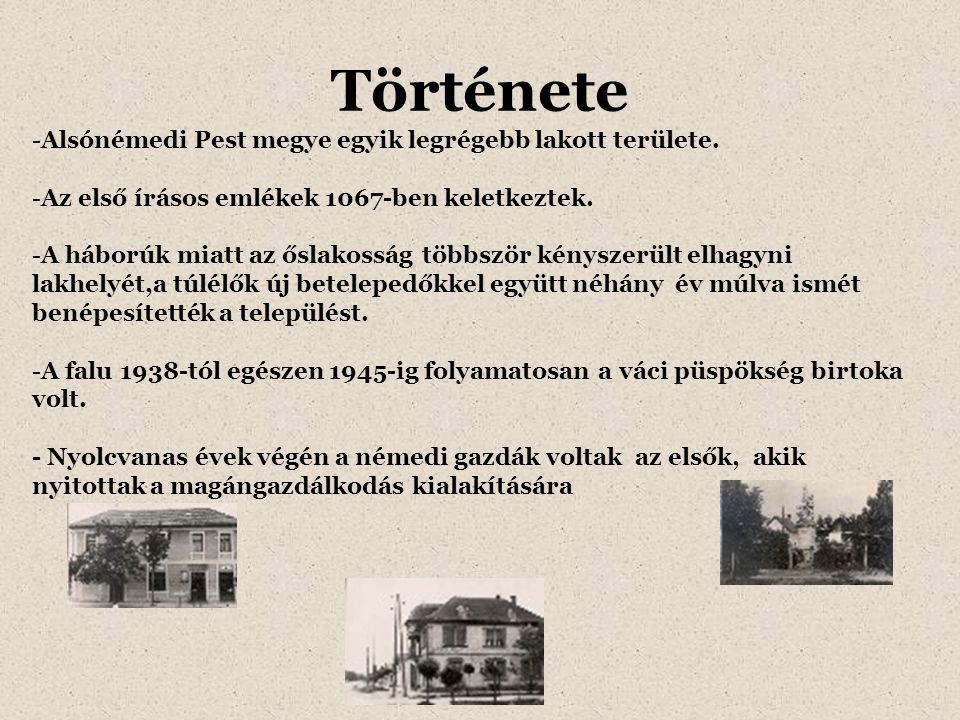 Története Alsónémedi Pest megye egyik legrégebb lakott területe.