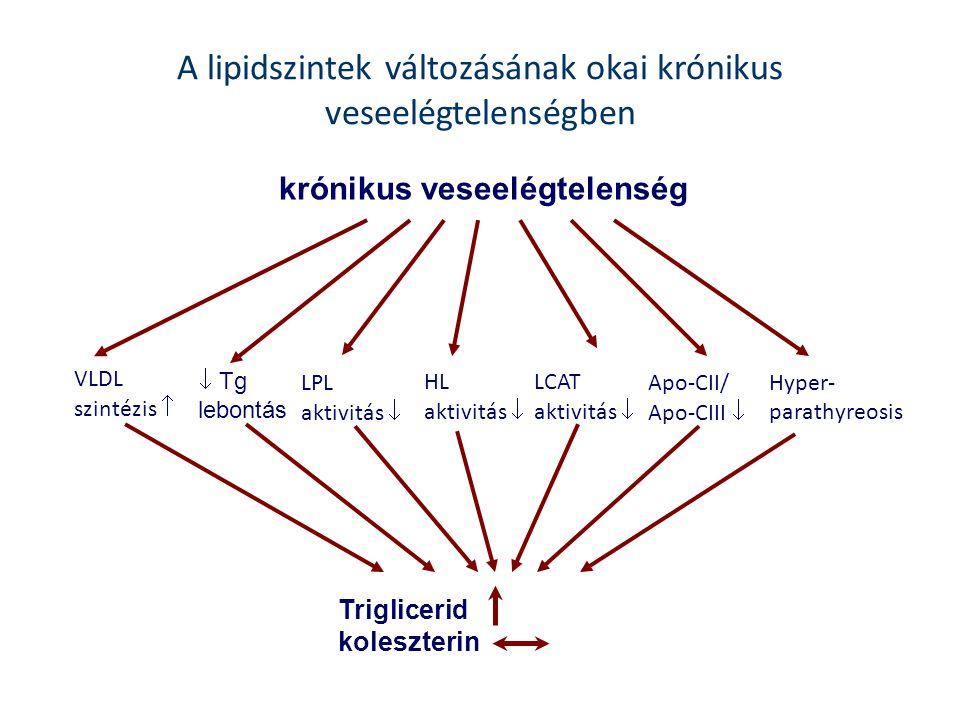 A lipidszintek változásának okai krónikus veseelégtelenségben