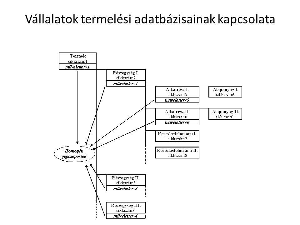 Vállalatok termelési adatbázisainak kapcsolata