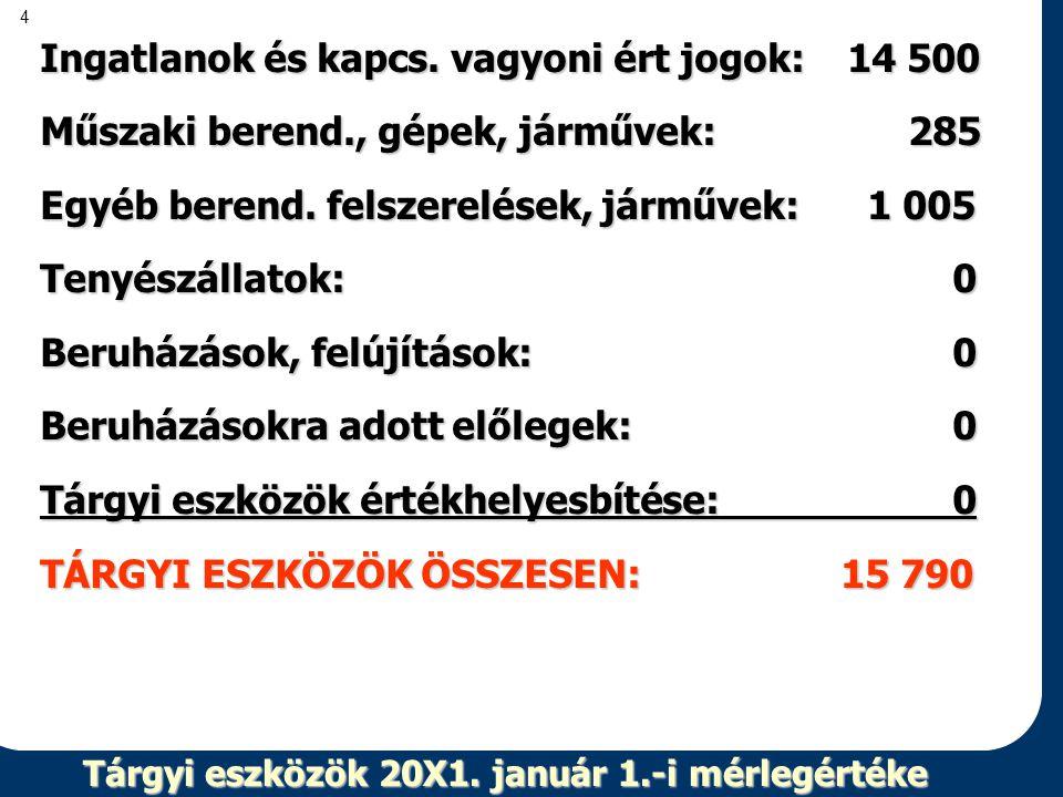 Tárgyi eszközök 20X1. január 1.-i mérlegértéke