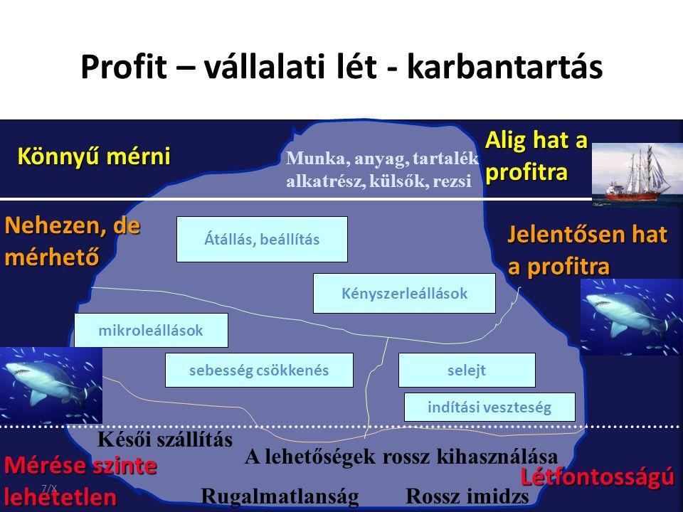 Profit – vállalati lét - karbantartás