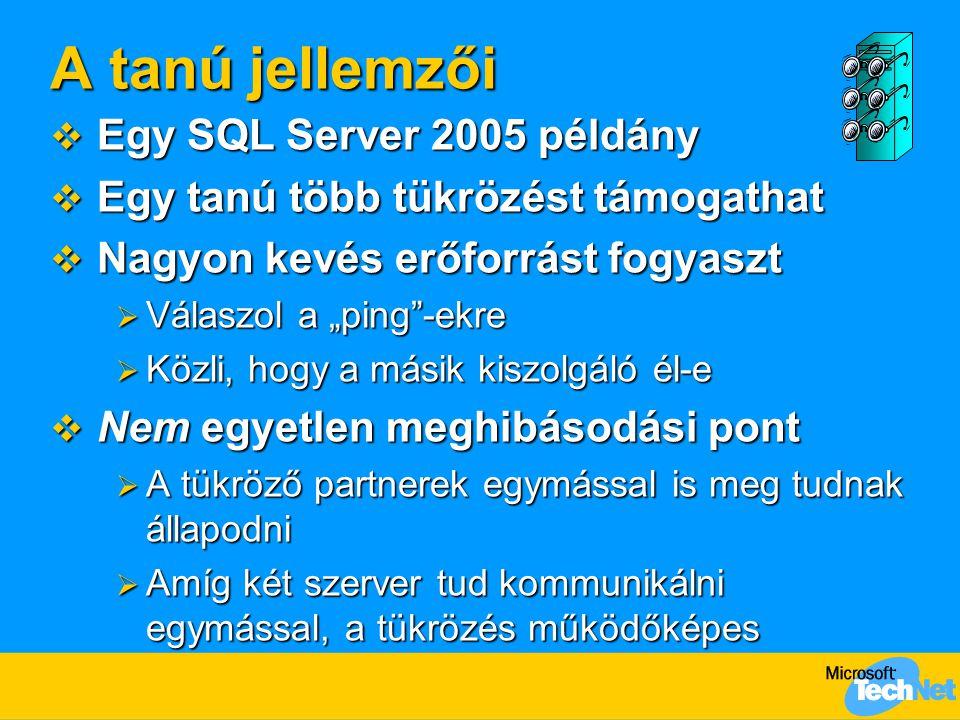 A tanú jellemzői Egy SQL Server 2005 példány