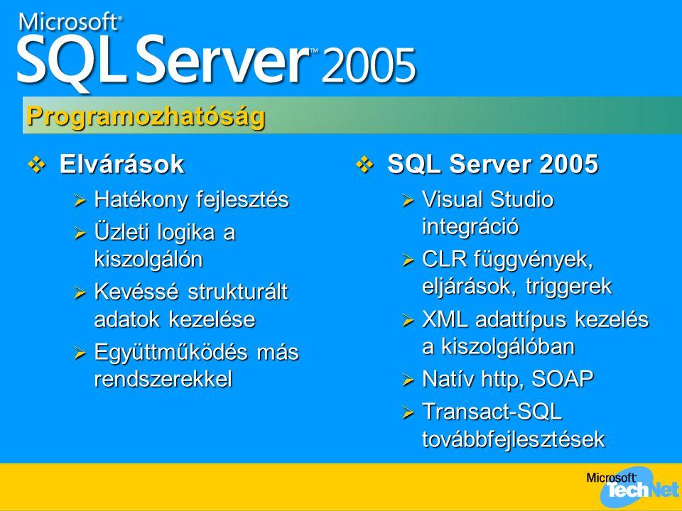 Programozhatóság Elvárások SQL Server 2005 Hatékony fejlesztés