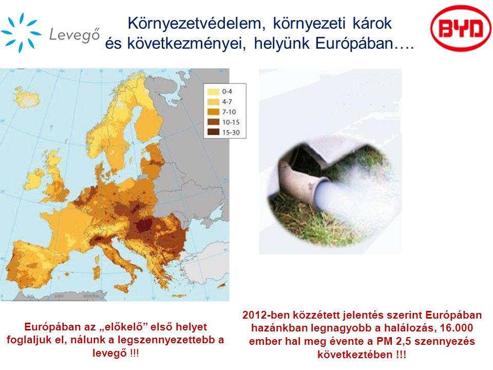 Környezetvédelem, környezeti károk