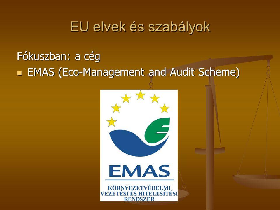 EU elvek és szabályok Fókuszban: a cég