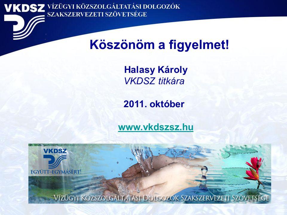 Köszönöm a figyelmet! Halasy Károly VKDSZ titkára 2011. október
