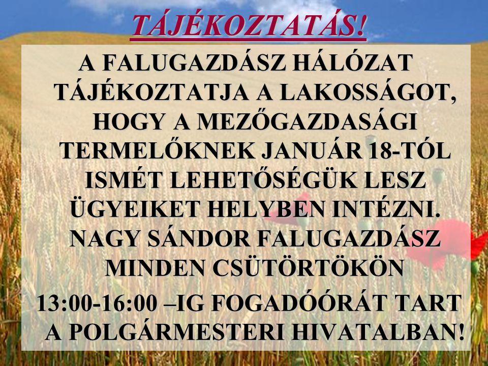 13:00-16:00 –IG FOGADÓÓRÁT TART A POLGÁRMESTERI HIVATALBAN!