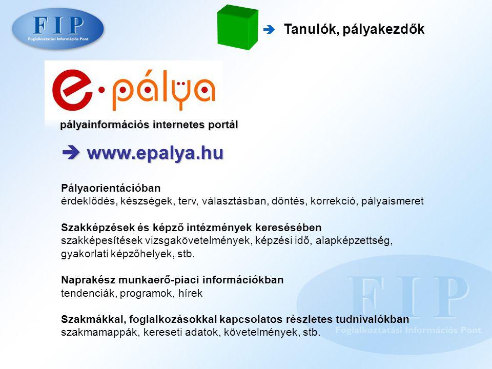 pályainformációs internetes portál