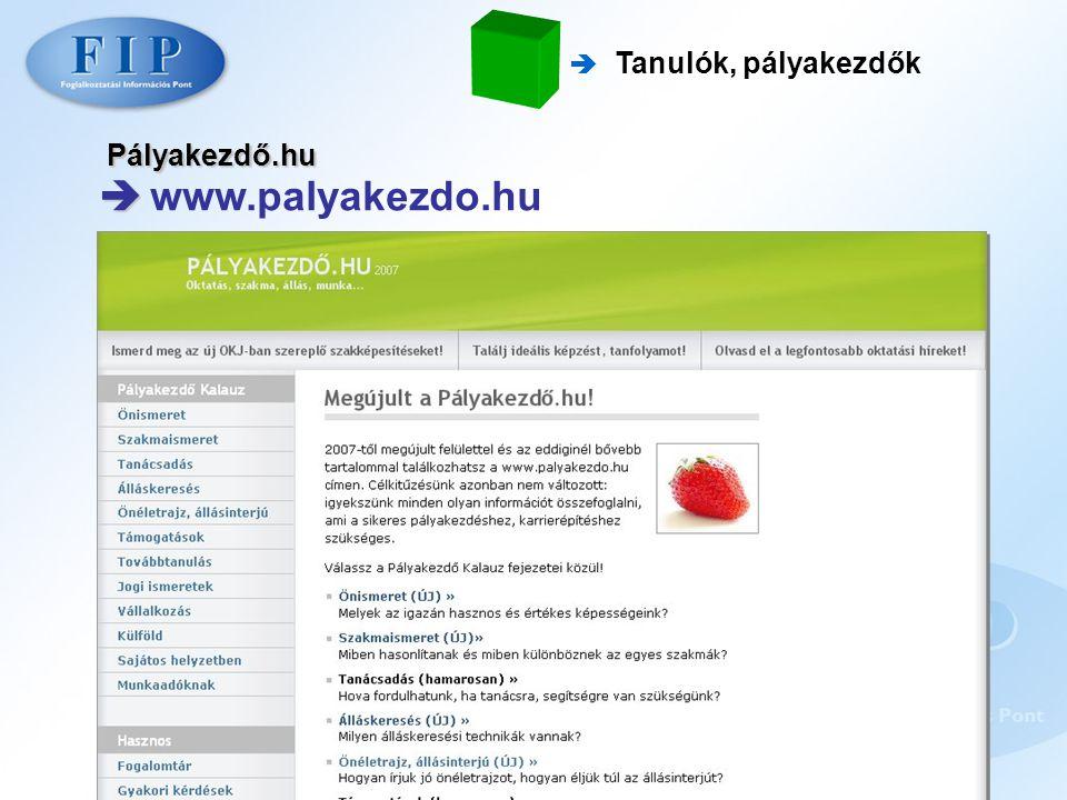  Tanulók, pályakezdők Pályakezdő.hu  www.palyakezdo.hu