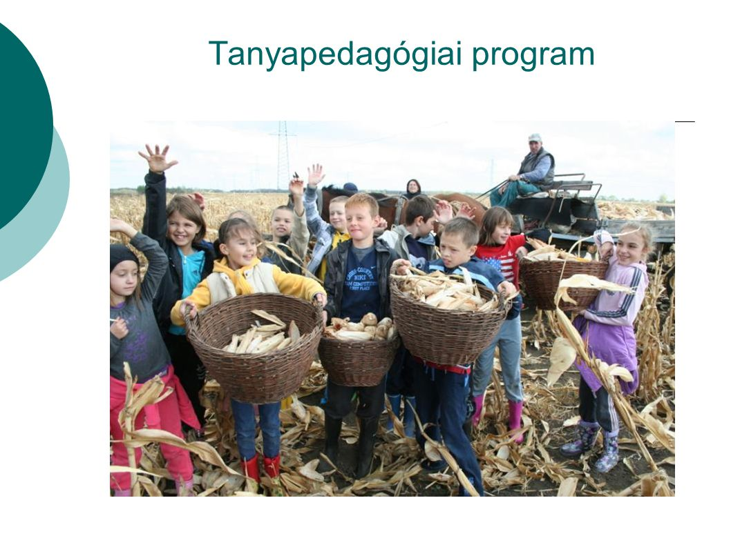 Tanyapedagógiai program