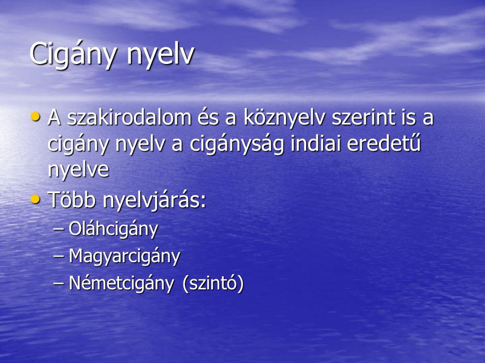 Cigány nyelv A szakirodalom és a köznyelv szerint is a cigány nyelv a cigányság indiai eredetű nyelve.