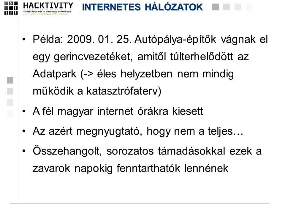 A fél magyar internet órákra kiesett
