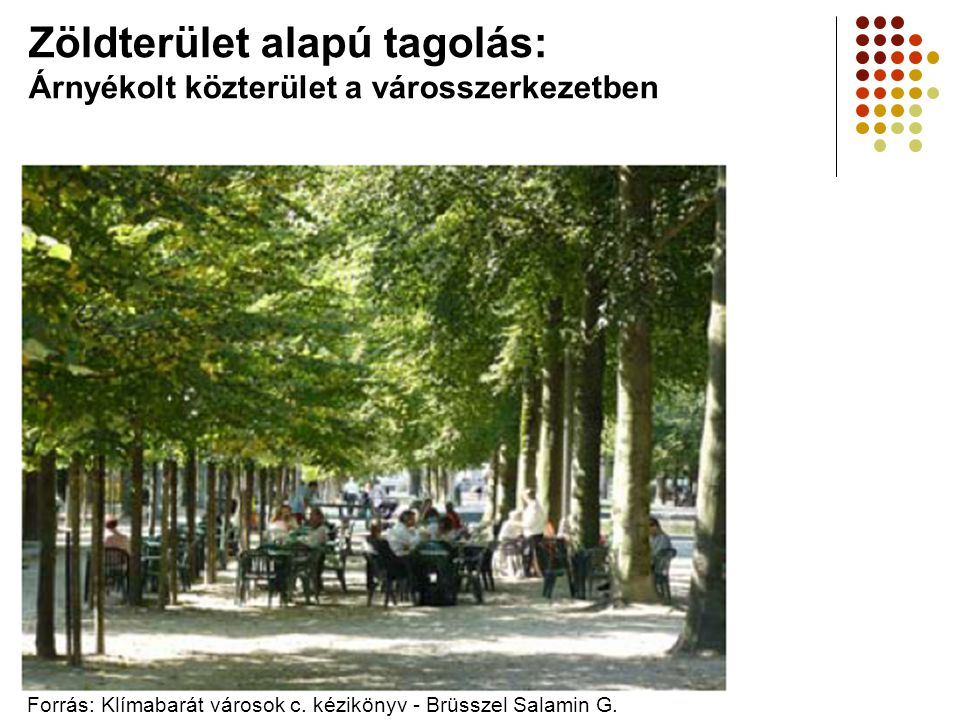 Zöldterület alapú tagolás: Árnyékolt közterület a városszerkezetben