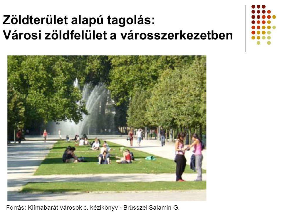 Zöldterület alapú tagolás: Városi zöldfelület a városszerkezetben