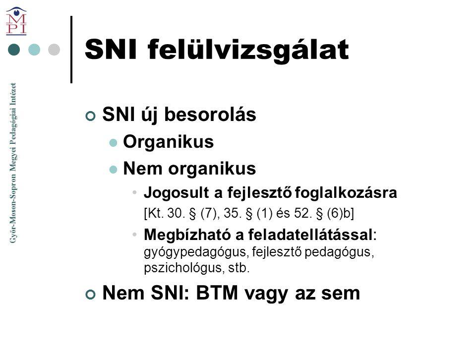 SNI felülvizsgálat SNI új besorolás Nem SNI: BTM vagy az sem Organikus