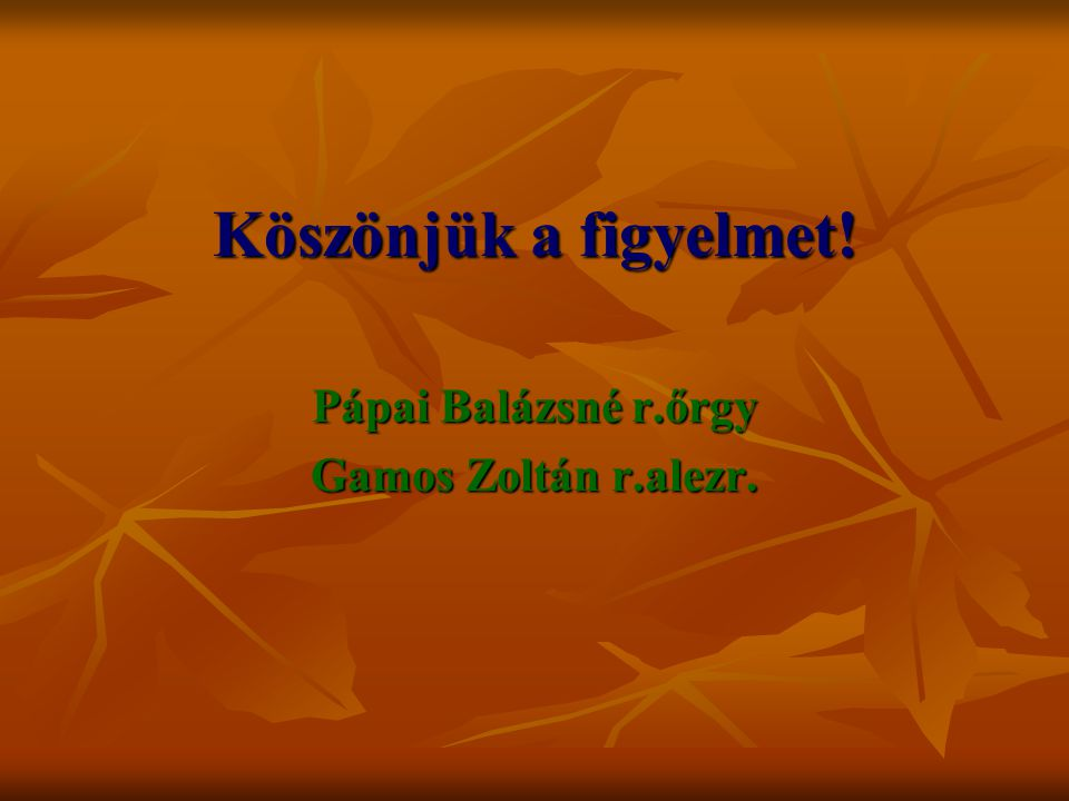 Köszönjük a figyelmet! Pápai Balázsné r.őrgy Gamos Zoltán r.alezr.