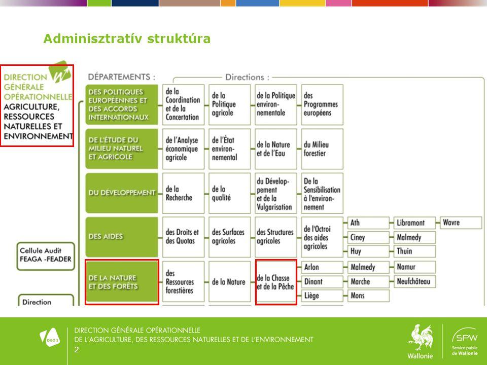 Adminisztratív struktúra