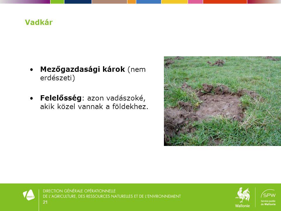 Mezőgazdasági károk (nem erdészeti)