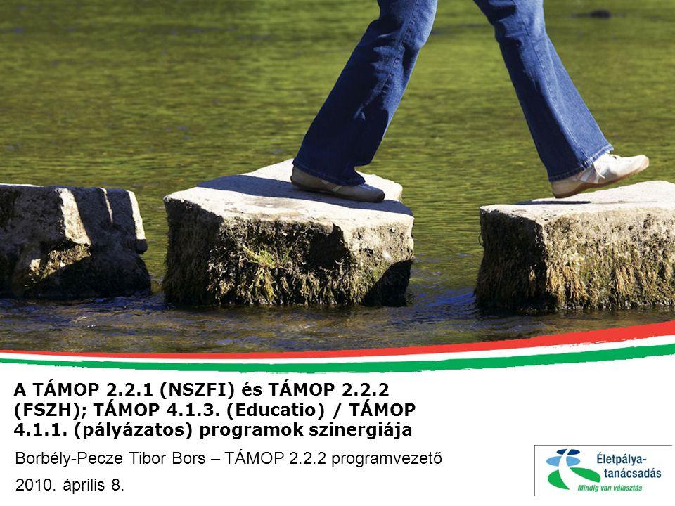 A TÁMOP 2. 2. 1 (NSZFI) és TÁMOP 2. 2. 2 (FSZH); TÁMOP 4. 1. 3
