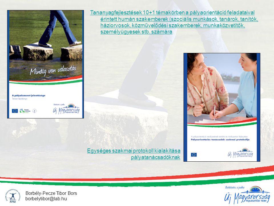 Egységes szakmai protokoll kialakítása pályatanácsadóknak