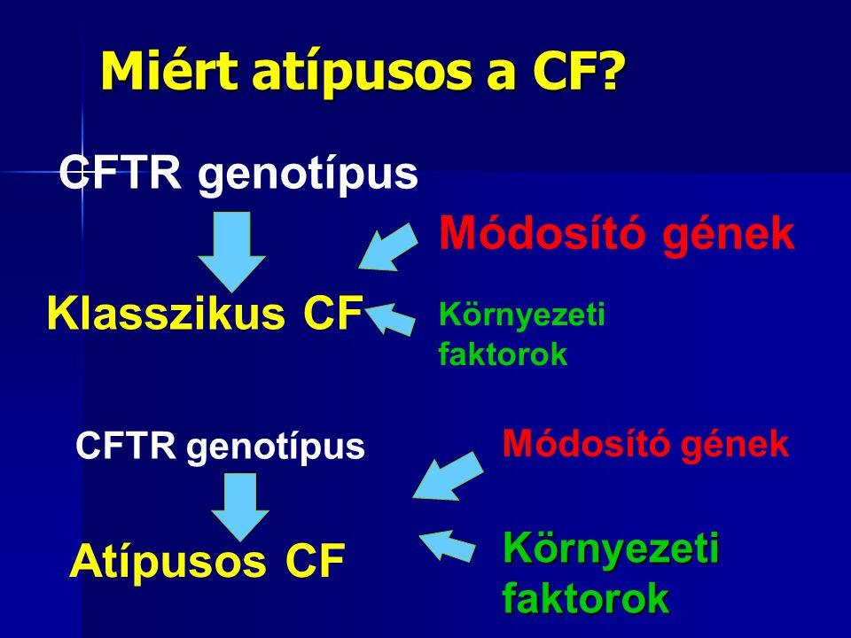 Miért atípusos a CF CFTR genotípus Módosító gének Klasszikus CF