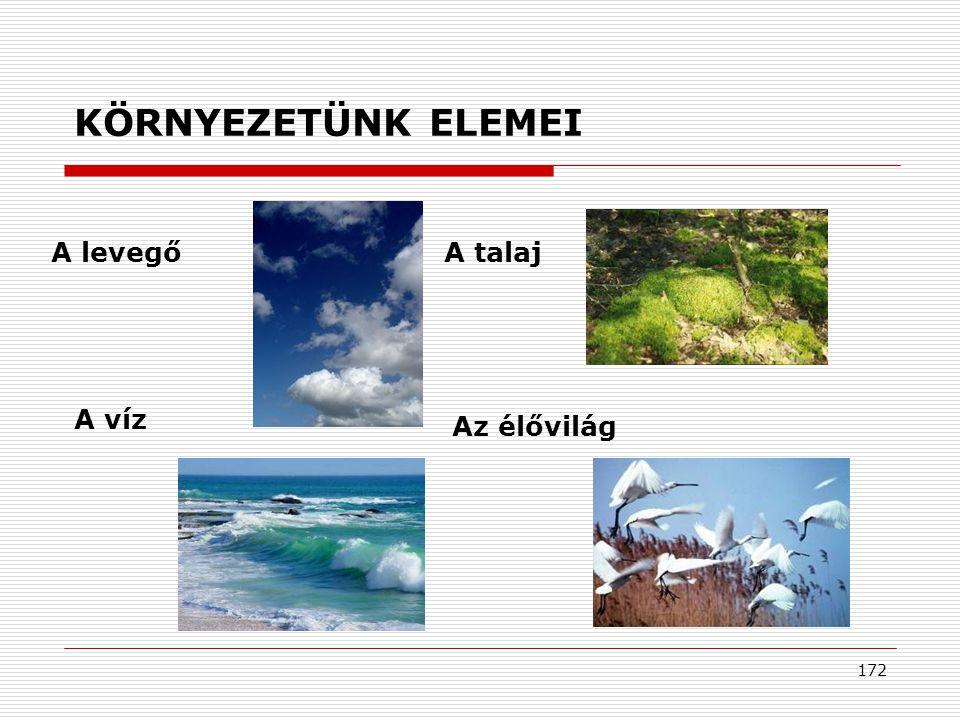 KÖRNYEZETÜNK ELEMEI A levegő A talaj A víz Az élővilág