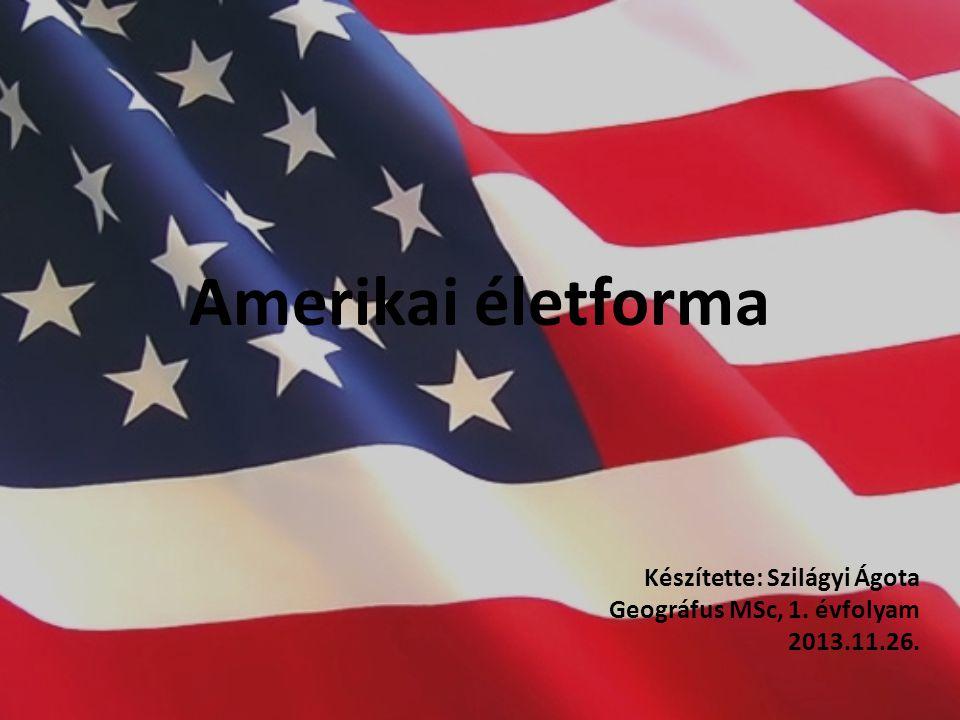 Készítette: Szilágyi Ágota Geográfus MSc, 1. évfolyam 2013.11.26.