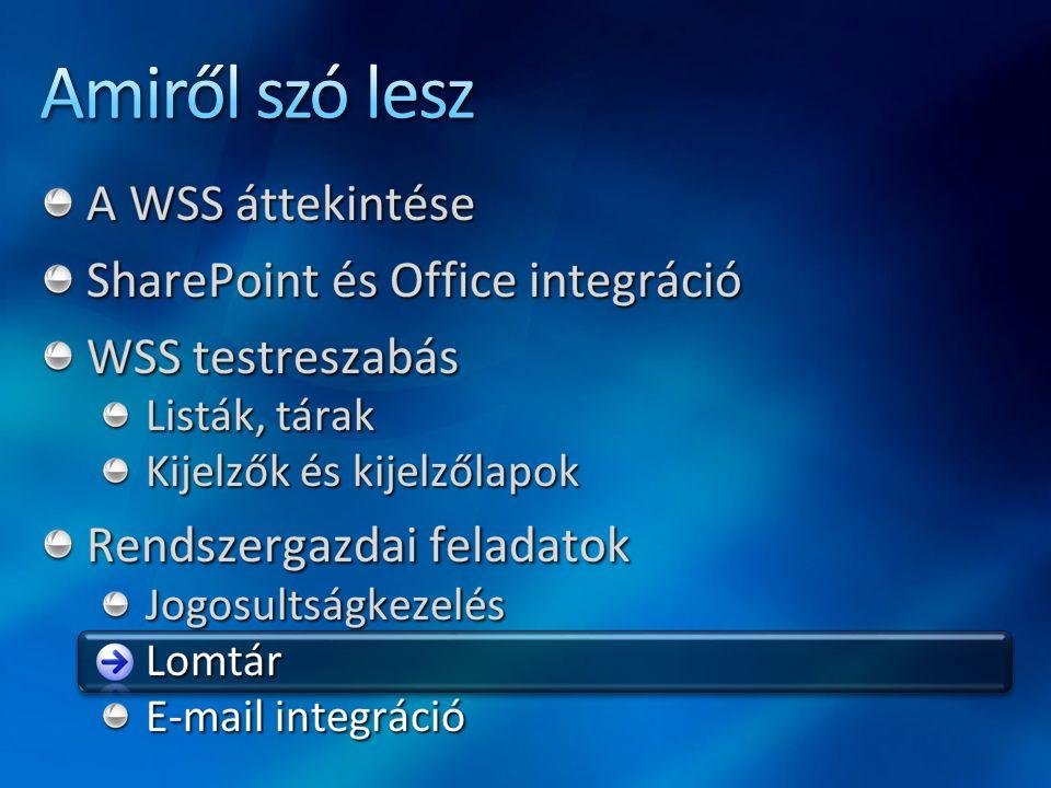 Amiről szó lesz A WSS áttekintése SharePoint és Office integráció
