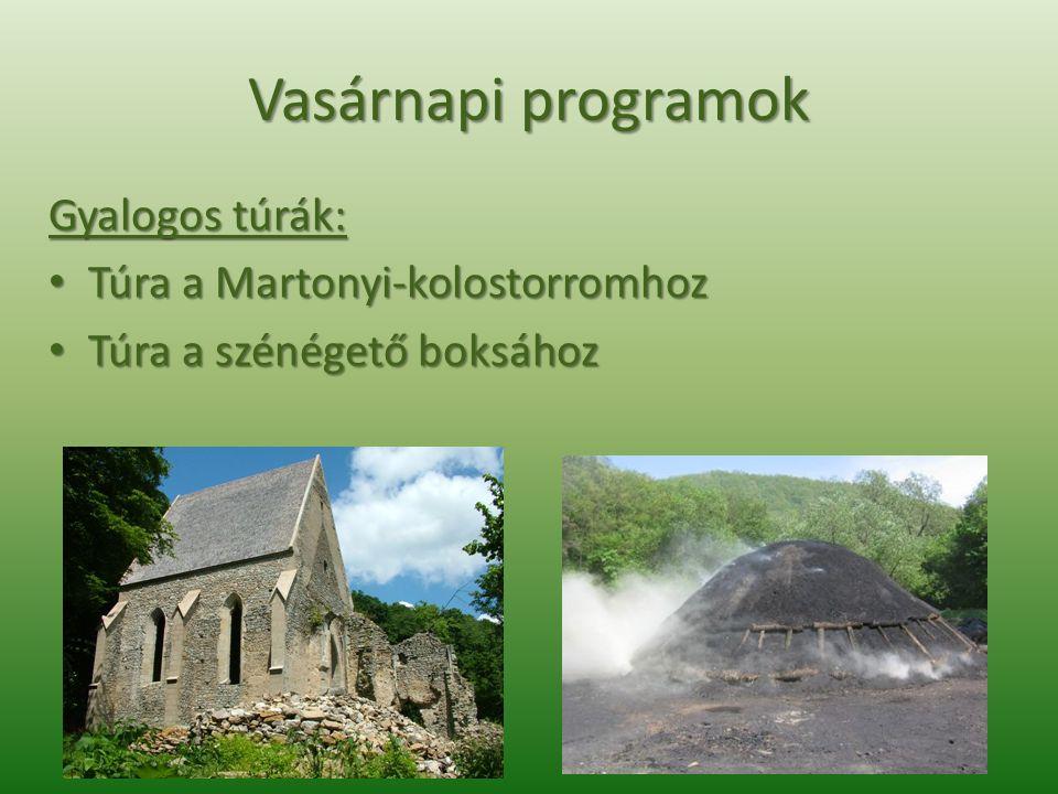 Vasárnapi programok Gyalogos túrák: Túra a Martonyi-kolostorromhoz