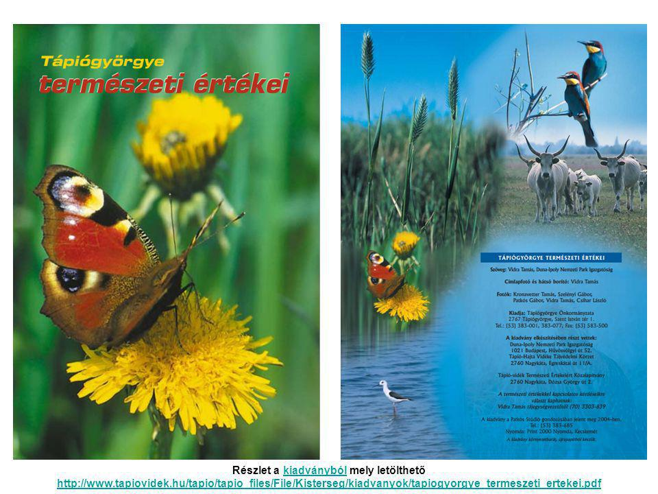 Részlet a kiadványból mely letölthető http://www. tapiovidek