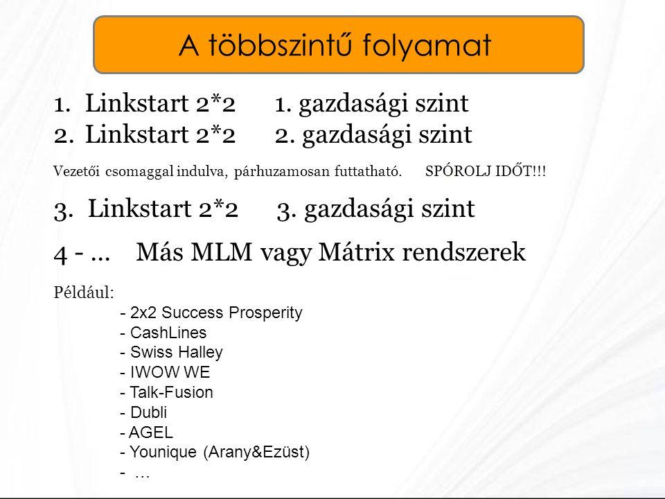 A többszintű folyamat Linkstart 2*2 1. gazdasági szint