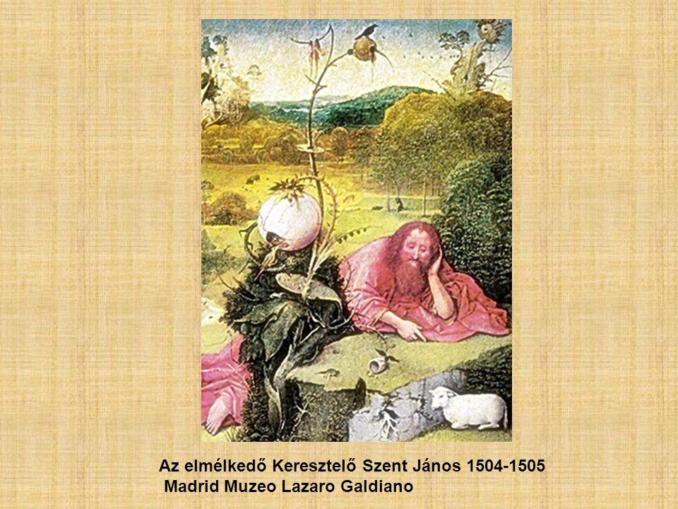 Az elmélkedő Keresztelő Szent János 1504-1505