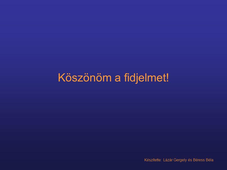 Köszönöm a fidjelmet! Készítette: Lázár Gergely és Béress Béla