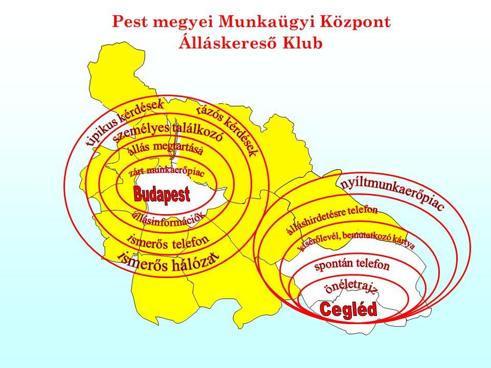 Pest megyei Munkaügyi Központ
