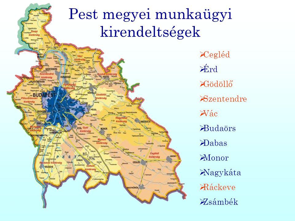 Pest megyei munkaügyi kirendeltségek