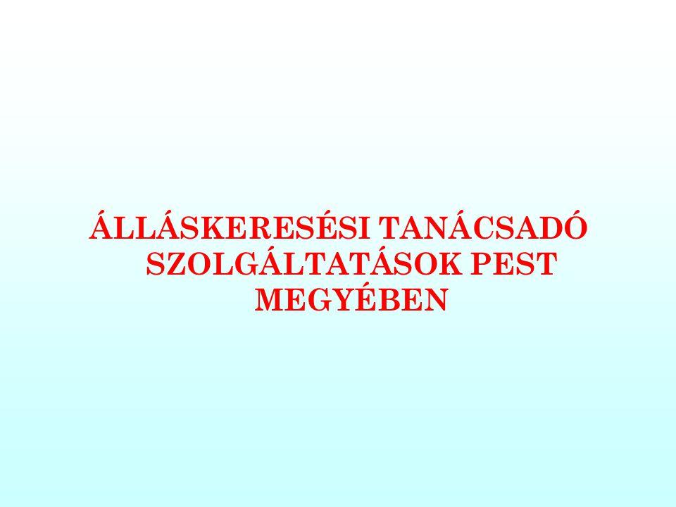 ÁLLÁSKERESÉSI TANÁCSADÓ SZOLGÁLTATÁSOK PEST MEGYÉBEN