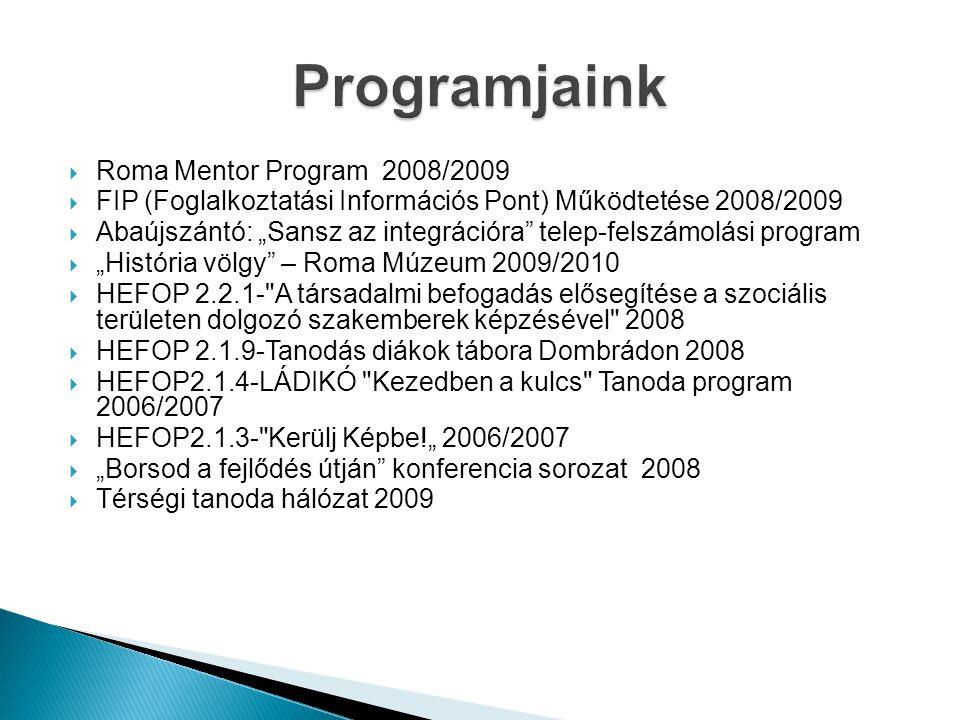 Programjaink Roma Mentor Program 2008/2009