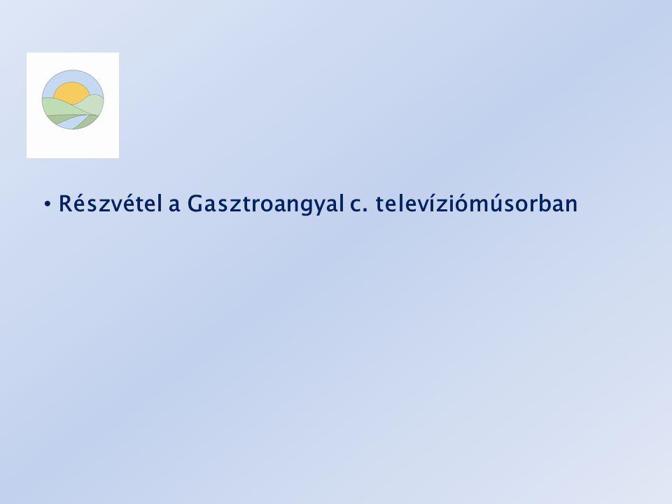 Részvétel a Gasztroangyal c. televíziómúsorban