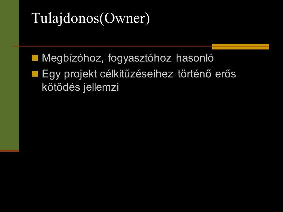 Tulajdonos(Owner) Megbízóhoz, fogyasztóhoz hasonló