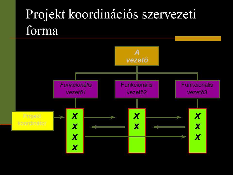 Projekt koordinációs szervezeti forma