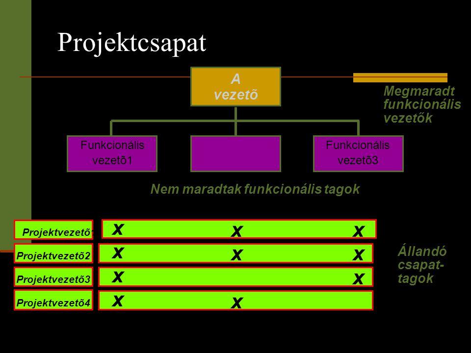 Projektcsapat x x x A vezetõ Megmaradt funkcionális vezetők