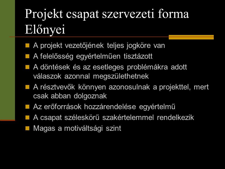 Projekt csapat szervezeti forma Előnyei