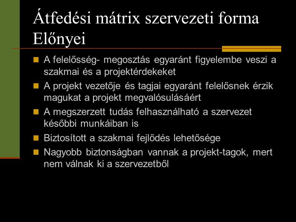 Átfedési mátrix szervezeti forma Előnyei