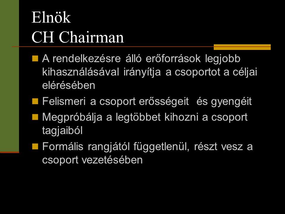 Elnök CH Chairman A rendelkezésre álló erőforrások legjobb kihasználásával irányítja a csoportot a céljai elérésében.