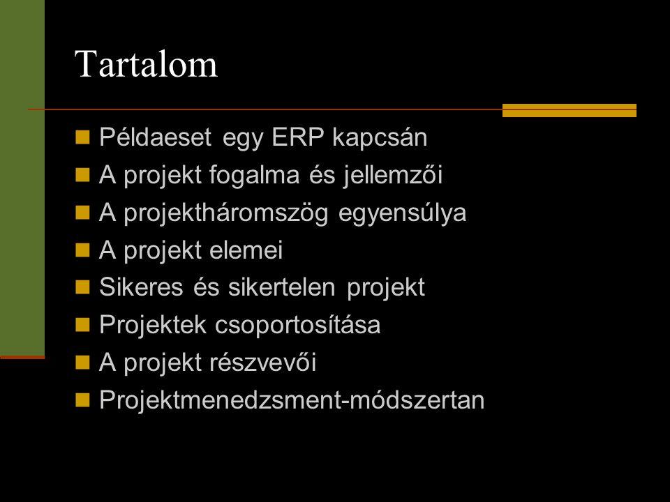 Tartalom Példaeset egy ERP kapcsán A projekt fogalma és jellemzői