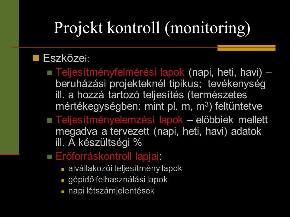 Projekt kontroll (monitoring)