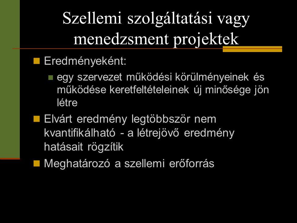 Szellemi szolgáltatási vagy menedzsment projektek
