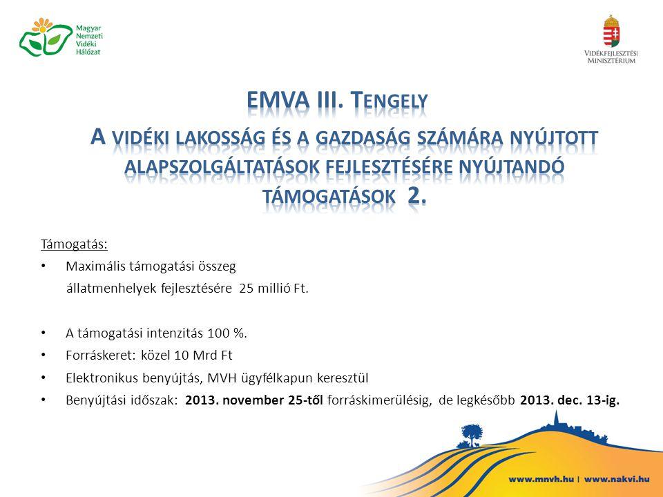 EMVA III. Tengely A vidéki lakosság és a gazdaság számára nyújtott alapszolgáltatások fejlesztésére nyújtandó támogatások 2.